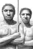 Homo Heidelbergensis Print by Mauricio Anton