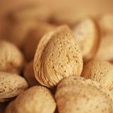 Almonds Premium Photographic Print by  Cristina