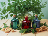 Bottled Aromatherapy Oils And Assorted Herbs Photographic Print by Erika Craddock
