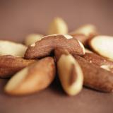Brazil Nuts Photographic Print by  Cristina