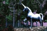 Unicorn Photographic Print by Christian Darkin
