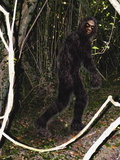 Bigfoot Photographic Print by Christian Darkin
