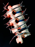 Back Pain Photographic Print by  Crown