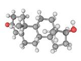 Testosterone Hormone, Molecular Model Fotografisk tryk af Laguna Design