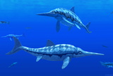 Ichthyosaur Marine Reptiles Photographic Print by Chris Butler