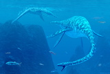Elasmosaurus Marine Reptiles Photographic Print by Chris Butler