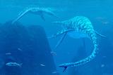 Elasmosaurus Marine Reptiles Prints by Chris Butler
