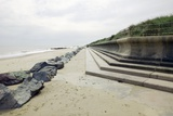 Coastal Defences, Norfolk Photographic Print by Colin Cuthbert