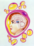 Abstract Artwork of Obesity: Brain And Fat Cells Photographic Print by John Bavosi