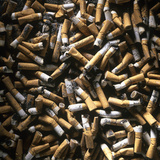 Cigarette Butts Photographic Print by Kevin Curtis