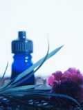 Aromatherapy Photographic Print by  Cristina