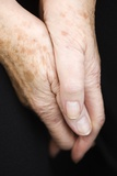 Elderly Woman's Hands Prints by  Cristina