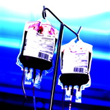 Blood Bags on Drip Stand Premium Photographic Print by Kevin Curtis