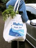 Modbury Resusable Shopping Bag Prints by Erika Craddock