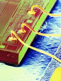 False-colour SEM of An Integrated Circuit. Premium Photographic Print by Dr. Jeremy Burgess