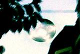 UFO Sighting Photographic Print by Christian Darkin