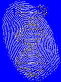 Genetic Fingerprint Prints by Victor De Schwanberg