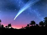 Artwork of Comet Hale-Bopp Over a Tree Landscape Prints by Chris Butler