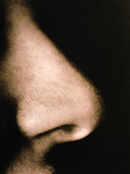 Close-up of a Human Nose In Side View Photographic Print by  Cristina