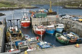 Boats In a Harbour Photographic Print by Adrian Bicker