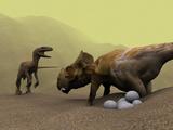 Protoceratops Dinosaur Defending Eggs Poster by Christian Darkin