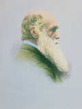 Charles Darwin Photographic Print by Dr. Jeremy Burgess