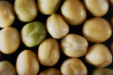 Macrophotograph of Swollen Garden Pea Prints by  Dr. Jeremy