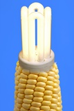 Biofuel Light Bulb, Comcept Photographic Print by Victor De Schwanberg