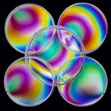 Light Interference Stress Pattern on Petri Dishes Photographic Print by Dr. Jeremy Burgess