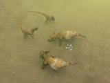 Protoceratops Dinosaurs Defending Eggs Posters by Christian Darkin