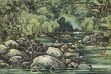 River In Tasmania, 19th Century Posters by King's College