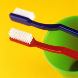 Toothbrushes Photographic Print by Kevin Curtis