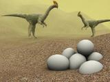 Oviraptor Dinosaurs Photo by Christian Darkin