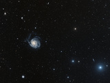 Spiral Galaxy M101 Photographic Print by Davide De Martin