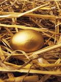 Golden Egg Print by Tony Craddock