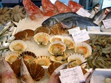 Seafood on Sale At a Market Photographic Print by Tony Craddock