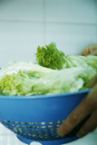 Lettuce Leaves Photographic Print by  Cristina