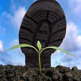 Environmental Damage, Conceptual Image Photographic Print by Victor De Schwanberg