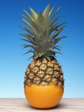 Genetically Modified Fruit Hybrid Premium Photographic Print by Victor De Schwanberg