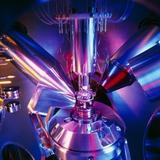 Scanning Electron Microscope Fotoprint van Colin Cuthbert