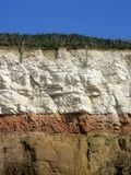 Rock Strata In Cliff Face, Hunstanton Posters by Martin Bond