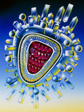 Artwork of Influenza Virus Photographic Print by John Bavosi