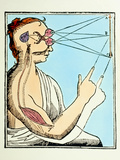 Illustration From De Homine by Rene Descartes Premium Photographic Print by Dr. Jeremy Burgess