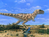 Artwork of a Tyrannosaurus Rex Dinosaur Photographic Print by Chris Butler
