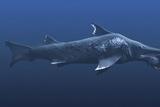 Helicoprion Prehistoric Shark Photo by Christian Darkin