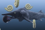 Helicoprion, with Ammonites Prints by Christian Darkin