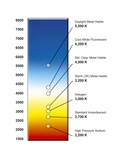 Light Bulb Colour Temperature Spectrum Prints by Henning Dalhoff