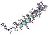 Exendin-4 Diabetes Drug Molecule Poster par Laguna Design