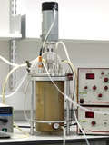 Bioreactor Photo by Dr. Jeremy Burgess