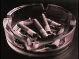 Close-up of Cigarette Butts And Ash In An Ashtray Posters by  Cristina